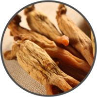 Asian-Red-Ginseng