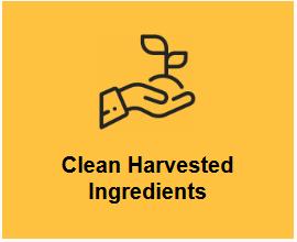 herbs ingredients