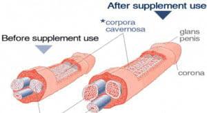 male enlargement pills